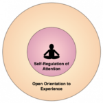 self regulation attention